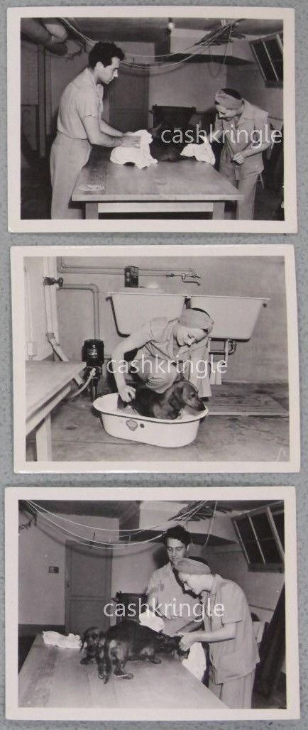 May 22, 1939. At home with boyfriend Charles Martin washing her dachshunds. Shot by Don Gusias.