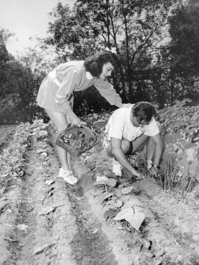 1944. A Victory Garden with husband Phillip Terry.