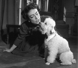 With unknown poodle in 1953.